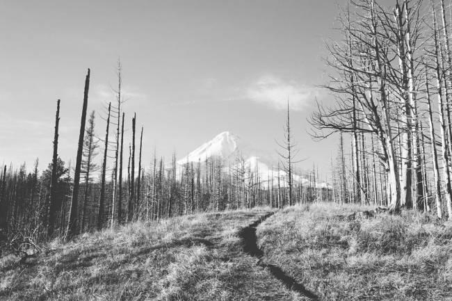 barren-field-mountain-view