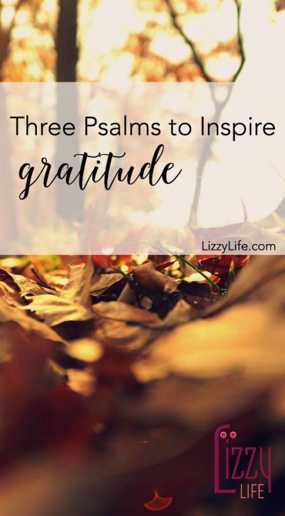 3 psalms to help you be thankful